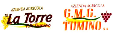 logo_tumino